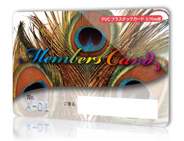 プラスチックカード.png