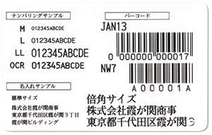 numberingscan.jpg